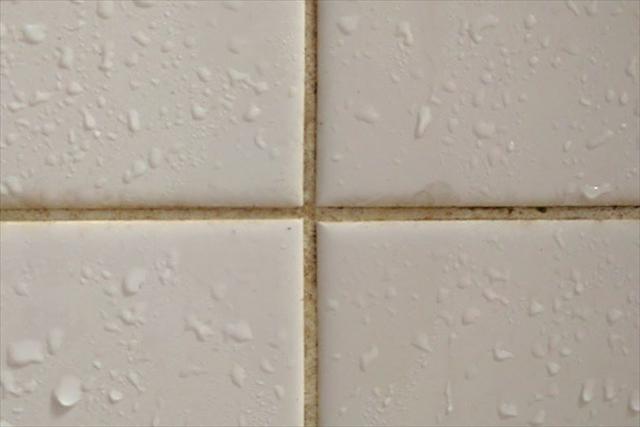 浴室に発生しやすいピンク汚れは何?